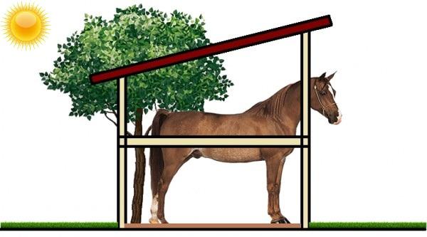 lovak felállítása)